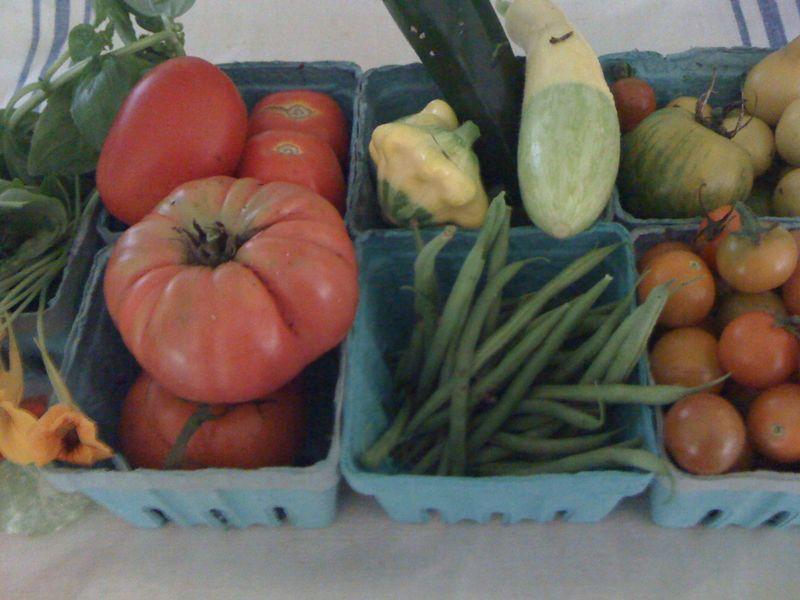 Veggies aug 5
