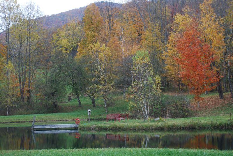 Larry's pond