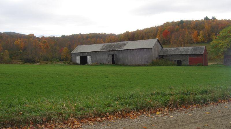 Fall sykes hollow